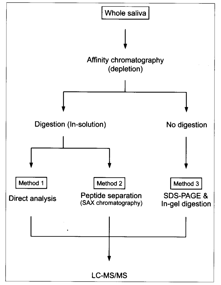 medium resolution of schematic diagram of saliva protein analysis using three different procedures