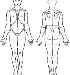 the body diagram used by fm patients to indicate local pain comprised of 50 standardized areas [ 850 x 1043 Pixel ]