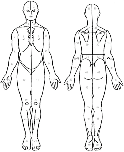 small resolution of the body diagram used by fm patients to indicate local pain comprised of 50 standardized areas