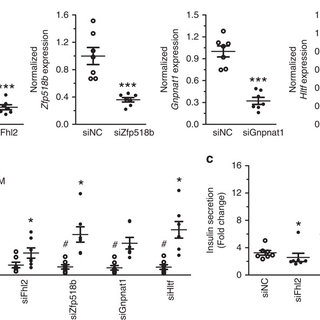 (PDF) Blood-based biomarkers of age-associated epigenetic