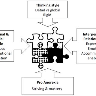 Diagrammatic formulation of carers' involvement within the