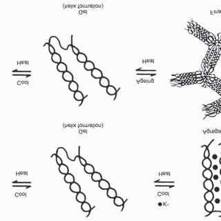 (PDF) Biodegradable polymer films from seaweed polysaccharides: A review on cellulose as a