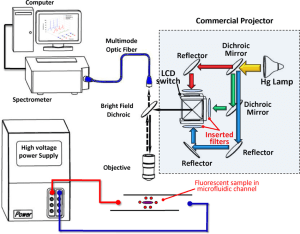 Schematic illustration of experimental setup used for