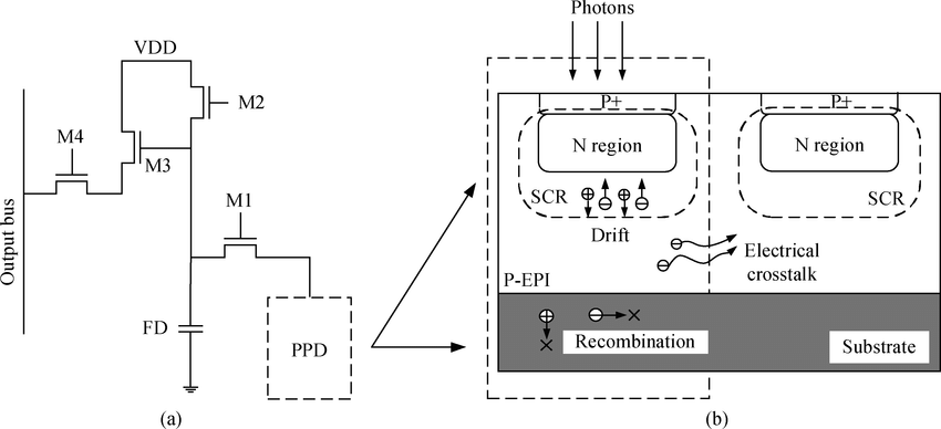 Illustration of a 4T pixel with a PPD structure. (a) 4T