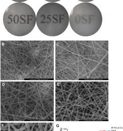transmission of light in nanofibrous membranes with different blend ratios notes general transmission of [ 782 x 1240 Pixel ]