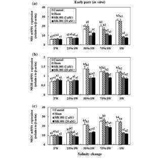 (PDF) Changes of physiological rhythms of N-methyl-D