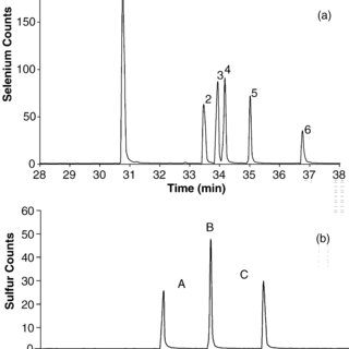 HPLC-ICP-MS chromatogram of the enzymatic extraction of