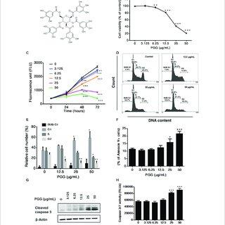 (PDF) 1,2,3,4,6-Penta-O-Galloyl-Beta-D-Glucopyranoside
