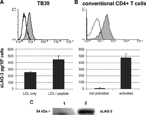 Ag-specific and conventional CD4 ϩ T cells express LAG-3