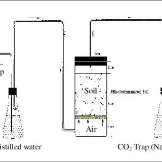 (PDF) Biodegradation of Polycyclic Aromatic Hydrocarbons