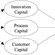 (PDF) Intellectual Capital and Performance in Causal