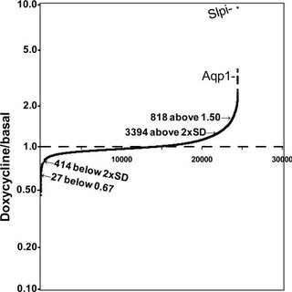 Verification of a role for PAM-CD. A, AtT-20 cells