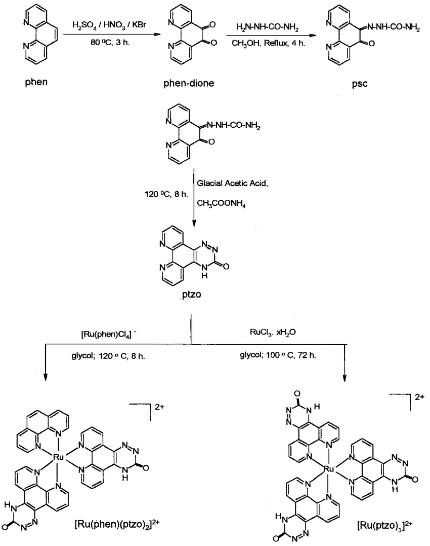 hight resolution of scheme leading to synthesis of the two new ruthenium ii complexes investigated during this