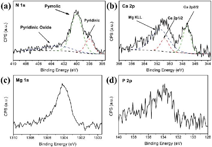 High-resolution XPS spectra of (a) nitrogen, (b) calcium