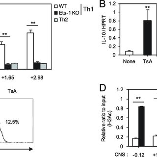 (PDF) Interaction of Ets-1 with HDAC1 represses IL-10