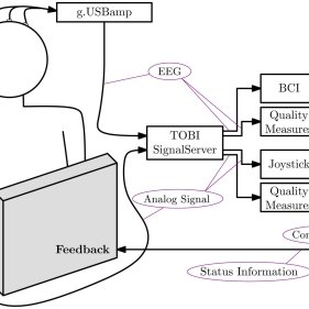 Performance and BCI quality during progress of the whole