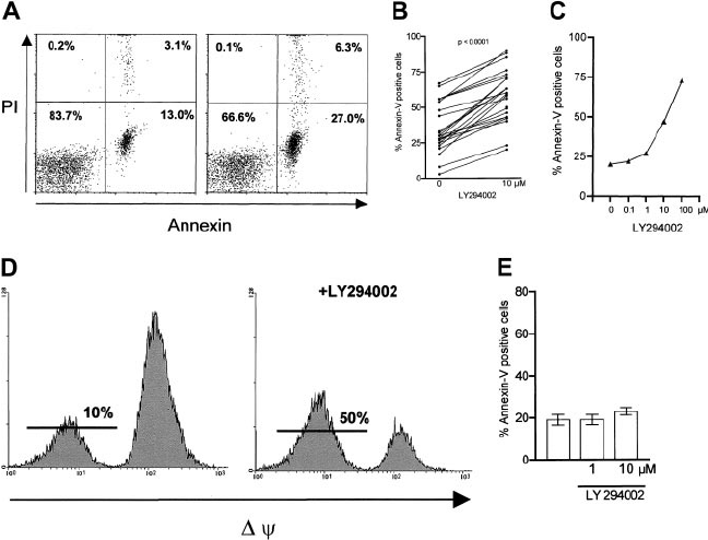 Effect of PI-3K inhibition on apoptosis in B-CLL cells. B