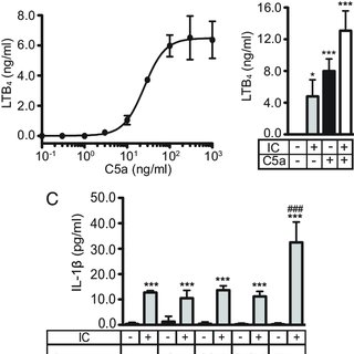 FcγRIII is required for IL-1β release. (A and B) Arthritis