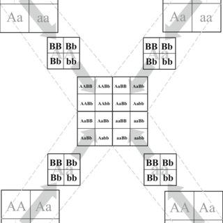 (PDF) How Do Secondary Level Biology Teachers Make Sense