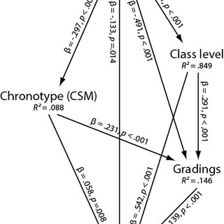 (PDF) Morningness is associated with better gradings and