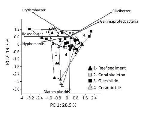 Principal Component Analysis (PCA) incorporating relative