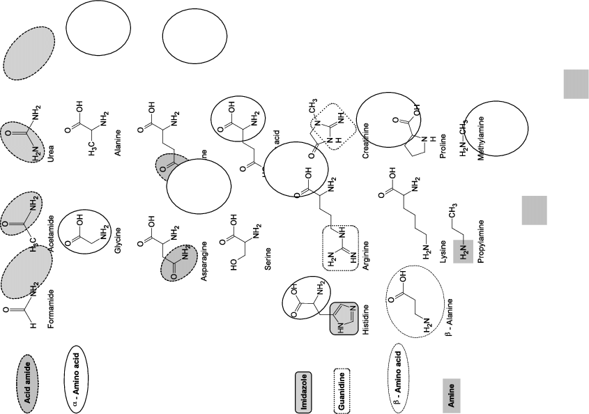 Nitrogenous compounds with different functional groups and