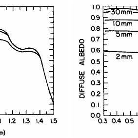 (PDF) Optical properties of snow and sea ice field