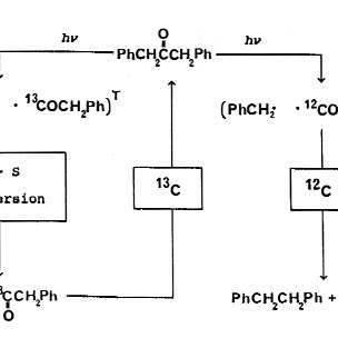 17 O isotope enrichment as a function of chain length in γ