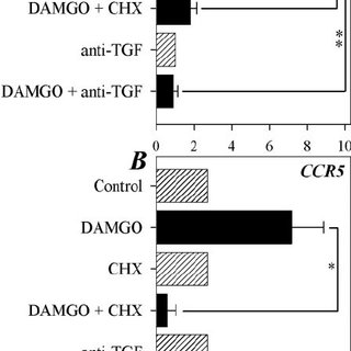 TGF- ␤ 1 induces CCL5 protein expression, and CCL2 and