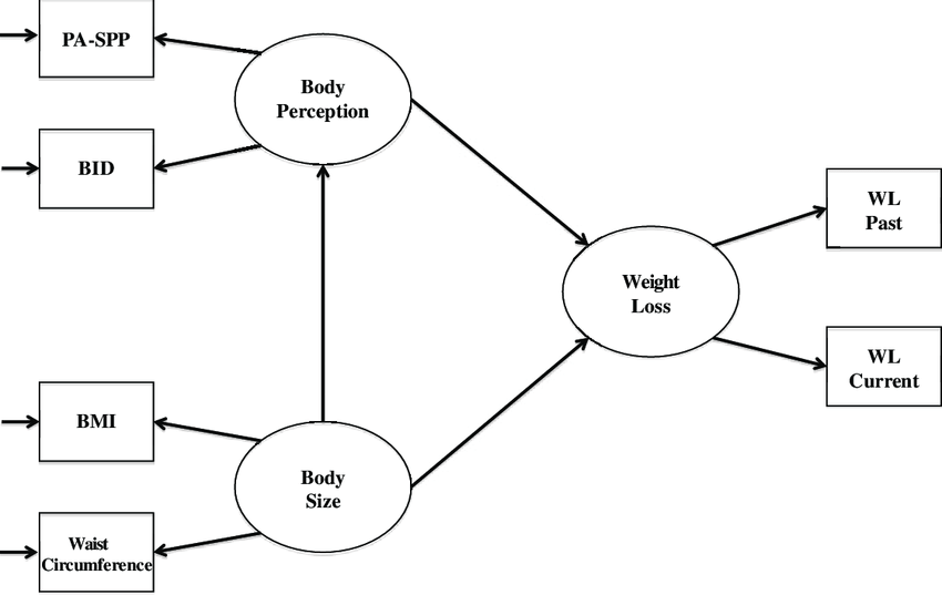 Hypothesized Structural Equation Model. PA-SPP ¼ Physical