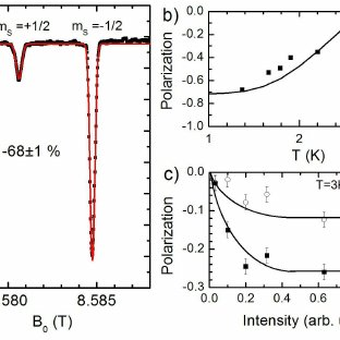(PDF) Fast Nuclear Spin Hyperpolarization of Phosphorus in