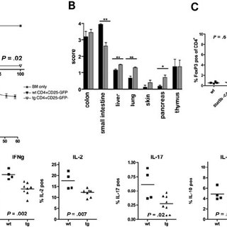 Effect of Stat5b overexpression on CD4 T-cell function in
