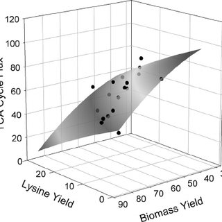 Growth and production characteristics of lysine-producing