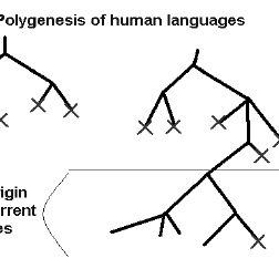 (PDF) Polygenesis of linguistic strategies: a scenario for