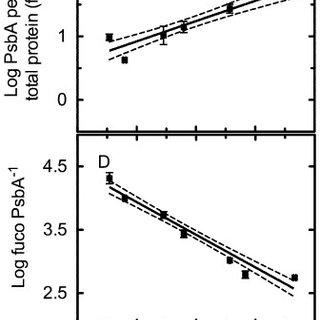 (PDF) Cell size trade-offs govern light exploitation