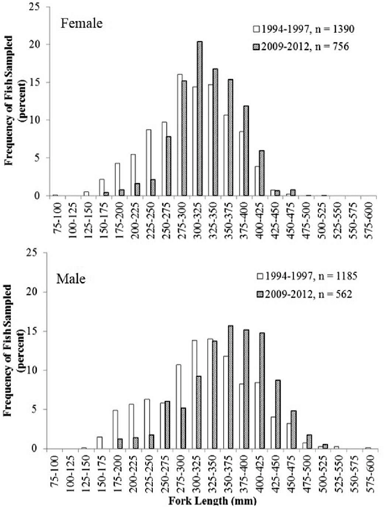 Size frequency distributions (FL, mm) of female (upper