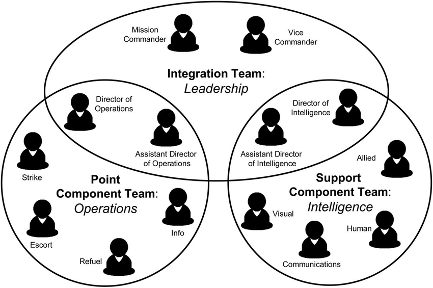 Conceptualization of the multiteam system structure