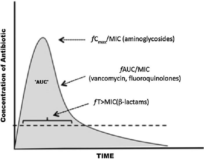 Pharmacokinetics-pharmacodynamics (PK-PD) Indices
