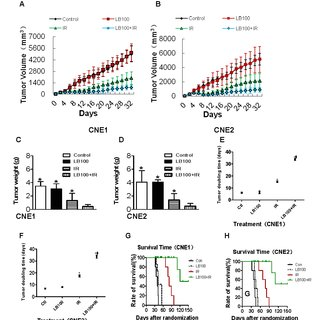 LB100 and IR induce cell cycle progression in CNE1 and