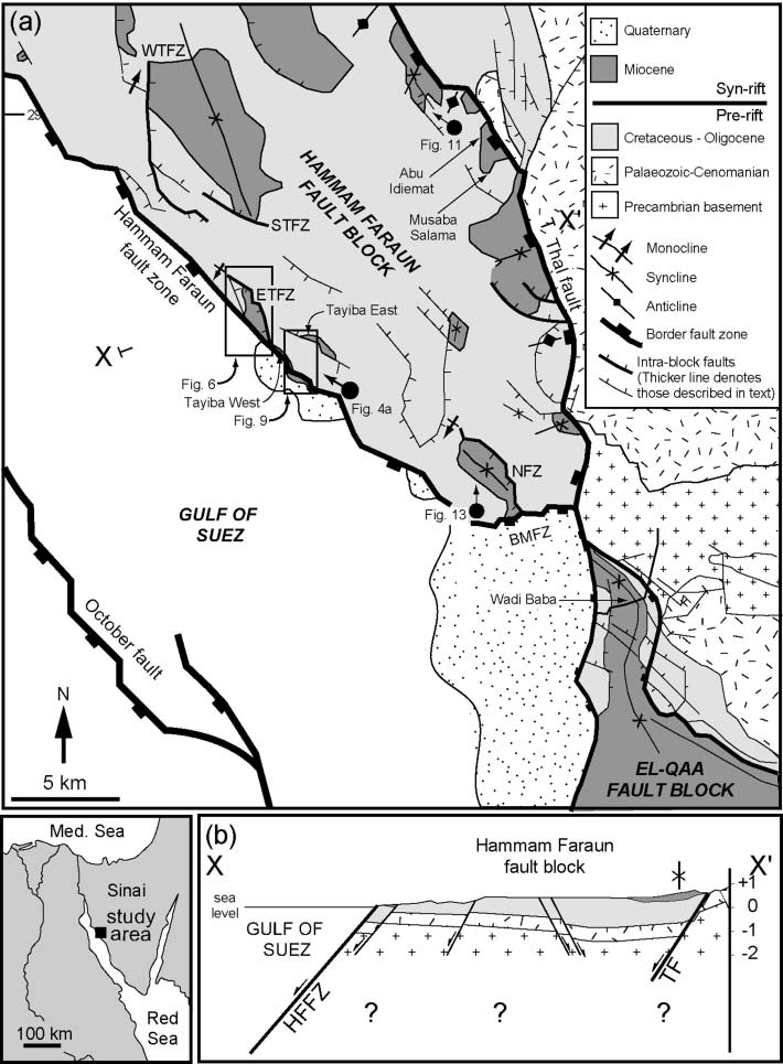 (a) Simplified geological map of the Hammam Faraun fault