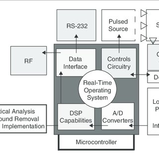 (PDF) Real-Time Detection of Microbal Contamination