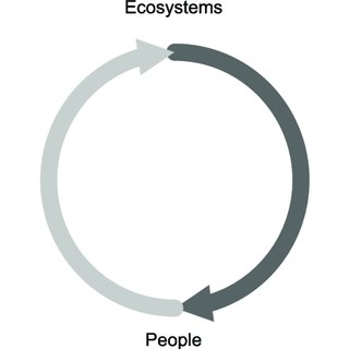 Closing the loop in the production metaphor by including