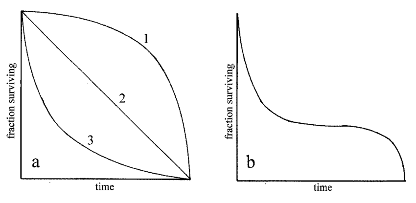 Idealized survivorship curves, with fraction surviving on