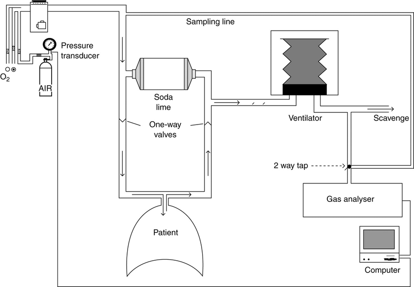Schematic diagram of the anaesthetic circuit and