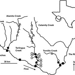 Study sites in the Trans-Pecos Region in Texas, U.S.A. The