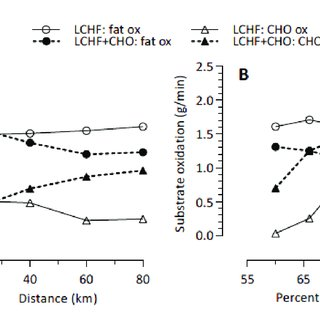 (PDF) A Carbohydrate Ingestion Intervention in an Elite