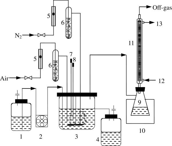 Schematic diagram of continuous VHG ethanol fermentation