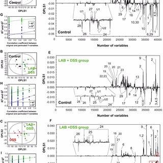 (PDF) 1H NMR-based metabonomic assessment of probiotic