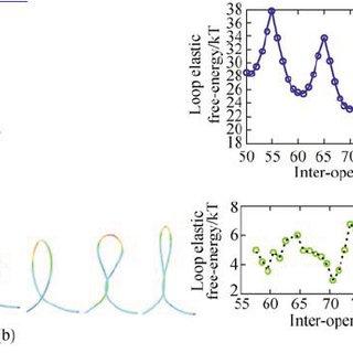 9 Worm-like chain model as a continuum elastic rod