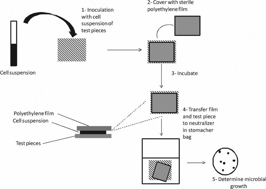 Schematic representation of procedure JIS Z 2801